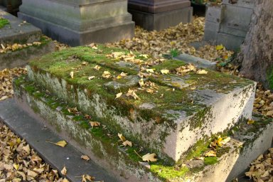 Leafy Tomb